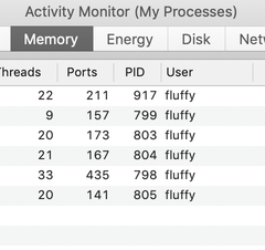 Activity Monitor showing memory usage for Slack and Discord